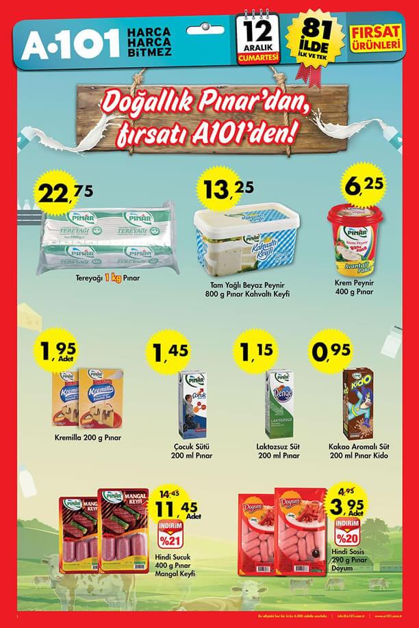 A101 12 Aralık 2015 Aktüel Ürünler Katalogu - Pınar