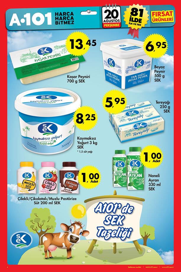 A101 20 Ağustos 2015 Aktüel Ürünler Katalogu - SEK