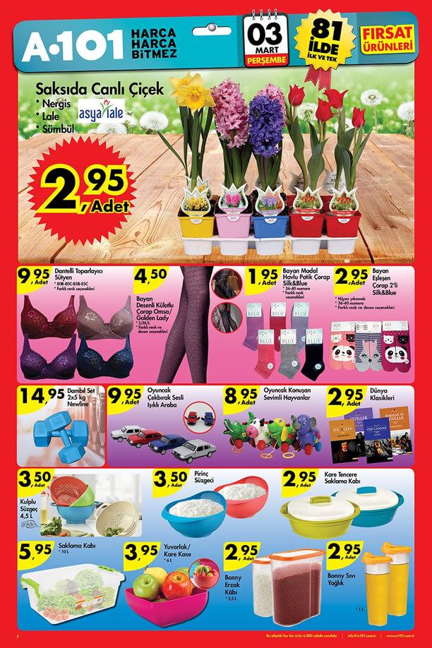 A101 Market 03.03.2016 Perşembe Katalogu - Saksıda Canlı Çiçek